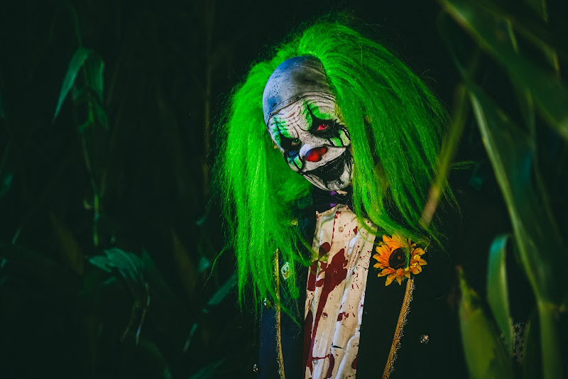 The Big Green Clown  di simone_ragazzini