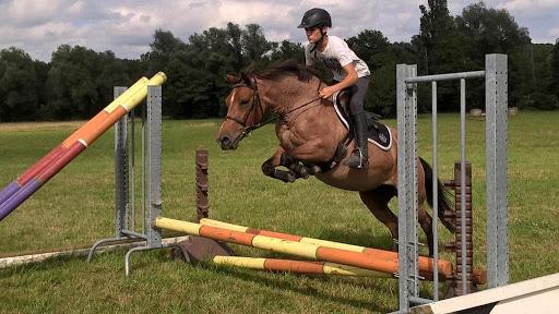 Cours d'équitation Lagraulet du Gers