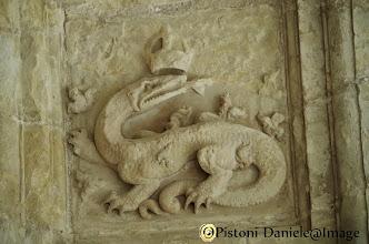 Photo: Simbolo di Re Francesco I