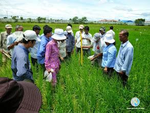 Photo: Enthusiastic SmartFarmers - CFPAR for Takeo province farmers , Lvea Village, Ang Popel commune, Korng Pisey district, Kampong speu province (28-29 Aug2014)