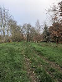 terrain à Sainte-Gemme-en-Sancerrois (18)