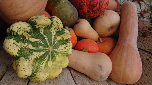 30/10/19 potimarrons et citrouilles paniers hebdo de Béatrice au tournesol bio magasin diététique en aArdèche Beauchastel