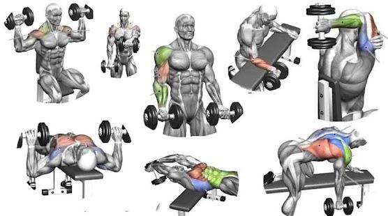 Dumbbell Workout Screenshot Thumbnail