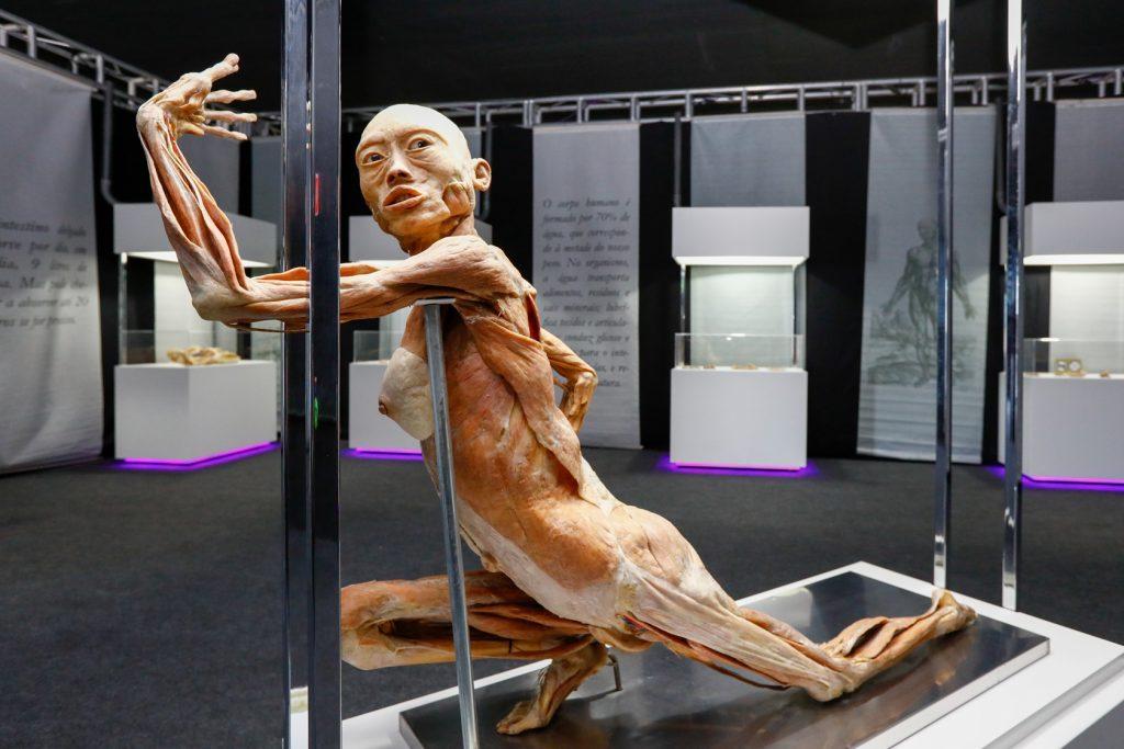 Human Bodies-catuai palladium - foto Kiko Sierich