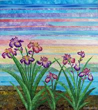 Photo: Irises, 20 x 23 inches