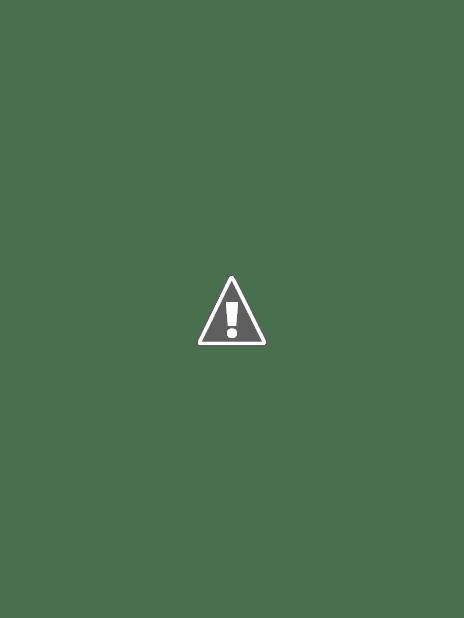 Túi xách công sở nữ xuất khẩu WBuyTuiXach68001 - 04