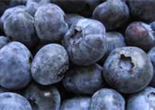 Dehydrating Blueberries Recipe
