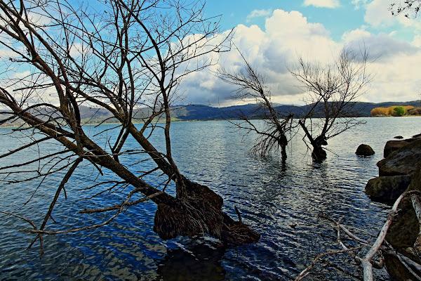 Lago Trasimeno di francymas