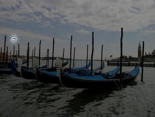 Venezia di trentina