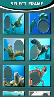 Sea Turtle Photo Frames - náhled