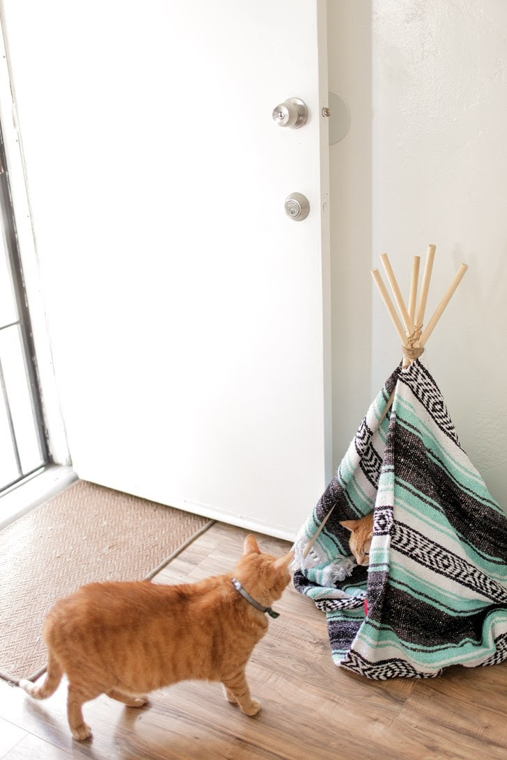 How to Build a Teepee for Cats.