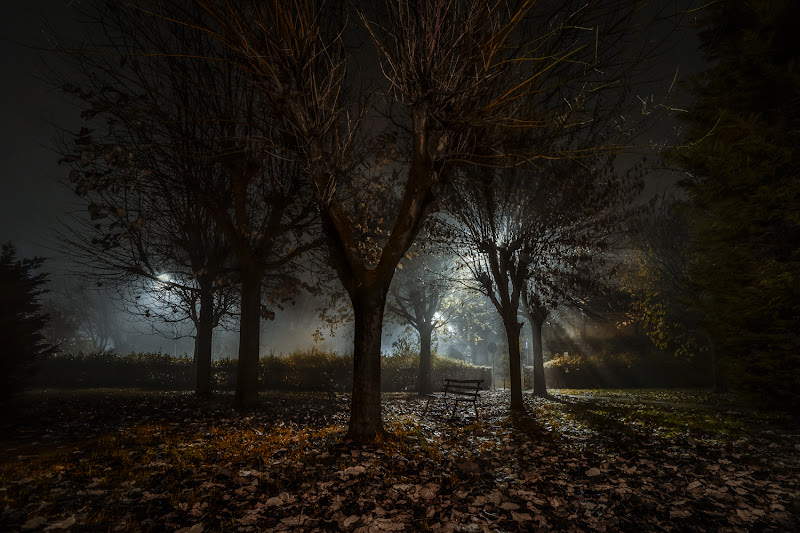 nebbia d'autunno di bi