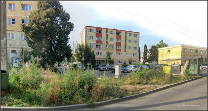 Photo: Turda - Str. Nuferilor - 2018.09.03