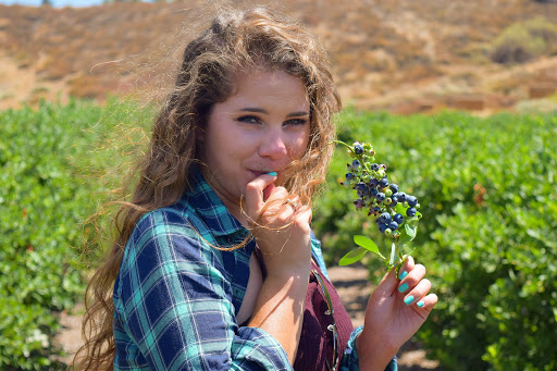 jessica-with-blueberries.jpg - Pick your own fresh berries at the Temecula Blueberry Farm.
