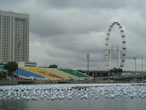 Photo: not sure what the white things on the water are, but i think they lit up at night