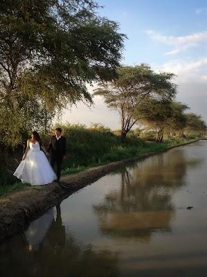 Fotógrafo de bodas Perla Callirgos (callirgos). Foto del 25.10.2015
