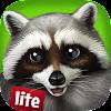 PetWorld - WildLife America