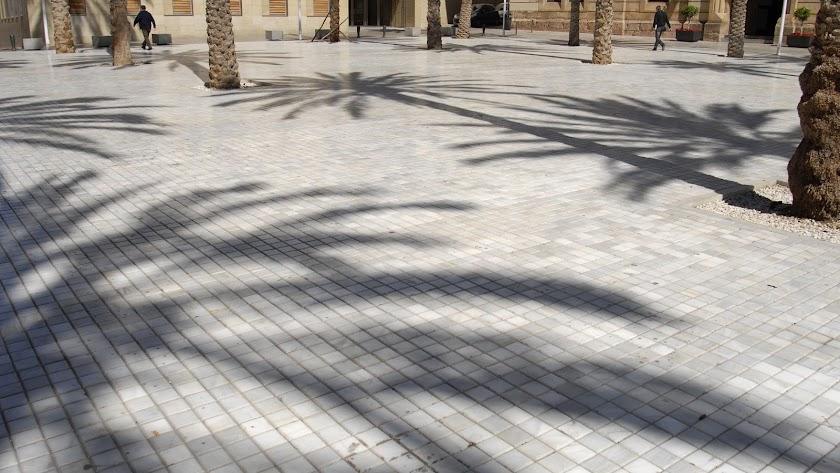 Domingo metafísico en la Plaza de la Catedral.