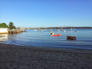 Photo: Nearby Rose Bay - Early morning