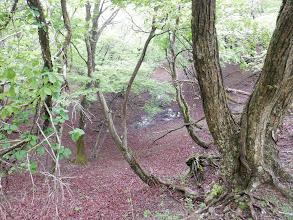 二重山稜の池