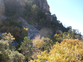 Photo: As the trail ascends the northeast slope of Emory Peak, we scanned the talus slope for the white bark of a Texas Madrone last measured in 1982.