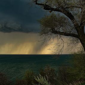 Storm Coming Over Lake Michigan, St. Joseph Overlook, May 9, 2018 by Jennifer Smusz - Landscapes Weather ( #lakemichigan, #thunderstorm, #puremichigan, #storm, #spookytree, #greatlakes, #stormoverlake, #lake, #springstorm, #overthebluff )
