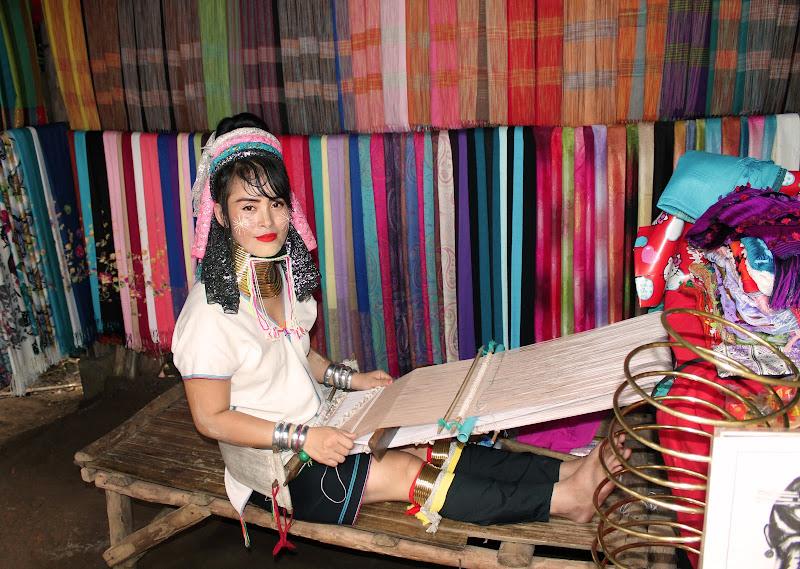 Colori dei Kayan di darioformica