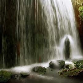 by Miodrag Mirjana Julic-Mex - Nature Up Close Water
