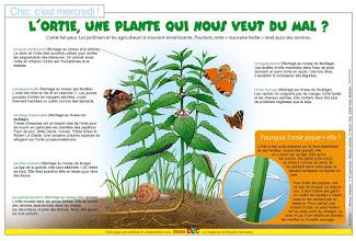 Photo: Bayard Presse - Ouest France