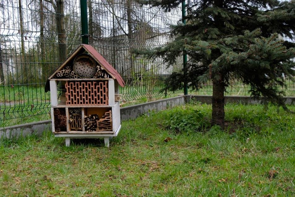 Klub Przyjaciół Natury: Domki dla owadów