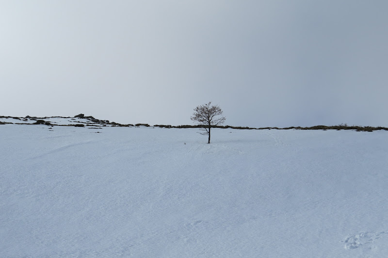 Inverno in terra sarda di macri.sanna