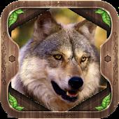 늑대의 세계