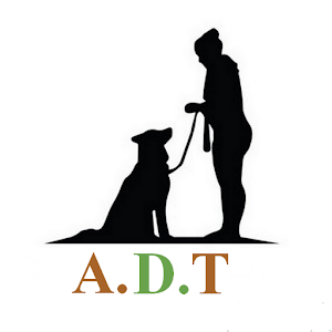Advanced Dog Training
