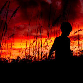 Sunset by Jill French - Landscapes Weather ( clouds, moods, freedom, silhouette, beach, emotion, kid, child, inspiring, free, sky, lighting, sunset, inspire, mood lighting, boy, inspirational,  )