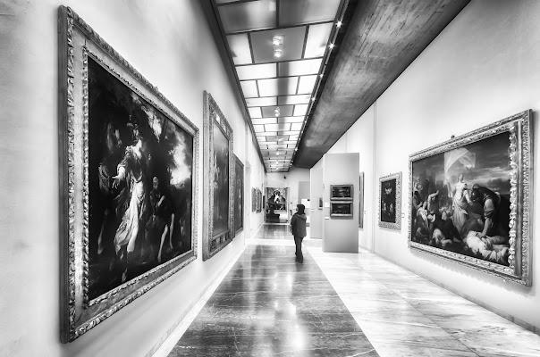 Una mattina in Pinacoteca di CarloBassi
