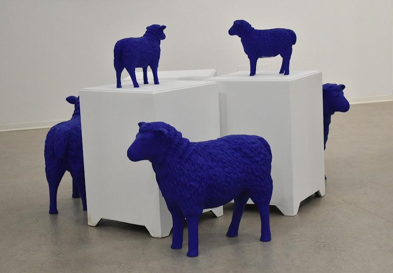 Le pecore blu di renzo brazzolotto