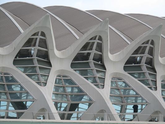 Calatrava. di sangiopanza