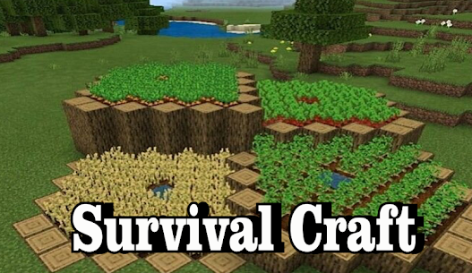 Crafting and Building  – Survival World Craft 2020 1