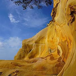 Wave Signature  by Ting Lee - Nature Up Close Rock & Stone