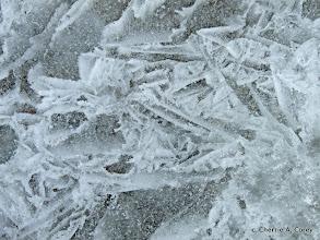 Photo: Thoreau's graphic ice