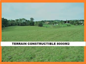 Terrain 8016 m2