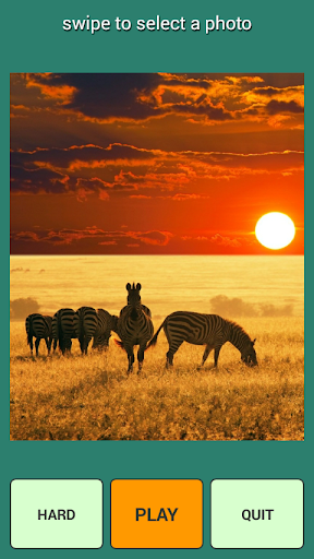 アフリカパズル