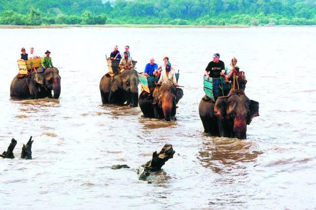 Balade à dos d'éléphants aux Hauts - Plateaux
