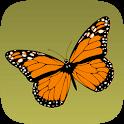 Schmetterlinge bestimmen icon