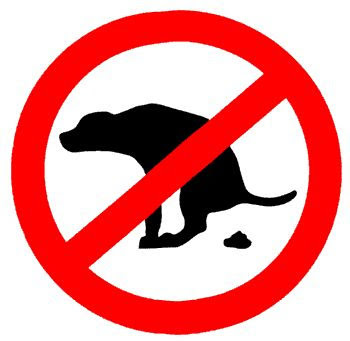 Purge begins on town dog fouling