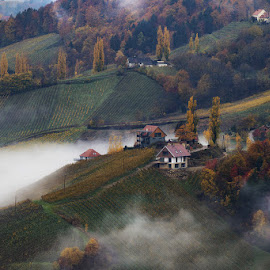 Autumn Morning by Jaro Miščevič - Landscapes Mountains & Hills ( houses, fog, autumn, trees, landscape, morning, colours )