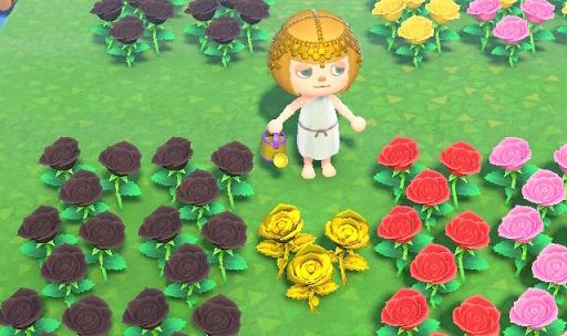 あつ森 花 増やし方