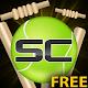 Street Cricket (game)