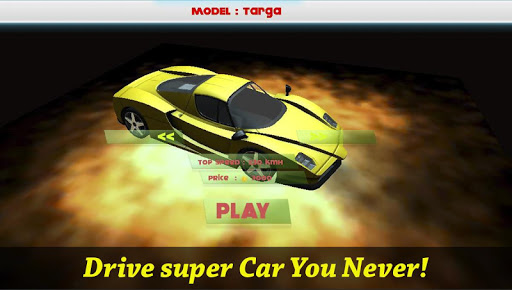 Mad Racing Fever