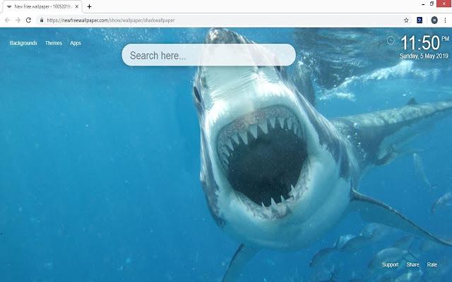 Shark Wallpaper HD Sharks New Tab Themes